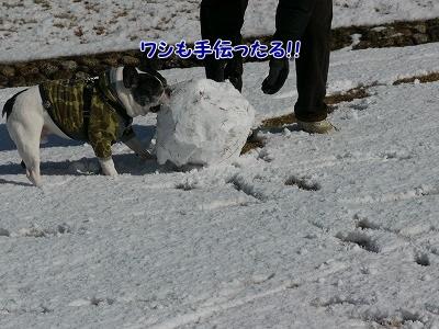 雪だるま (1)