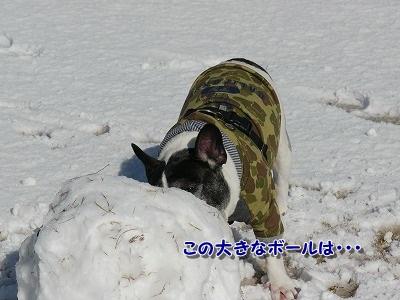 ゆきあそび (1)