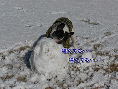 ゆきあそび (3)