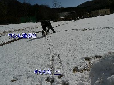 ゆきあそび (6)