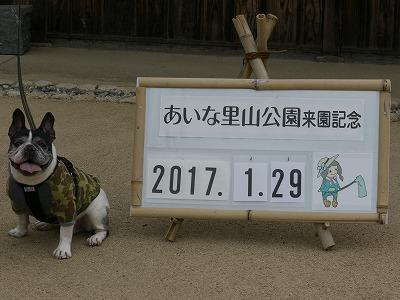 あいな里山公園2 (4)