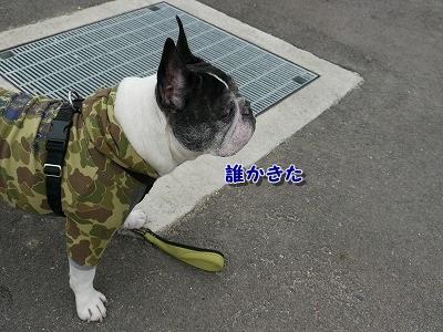 あいな里山公園3 (5)