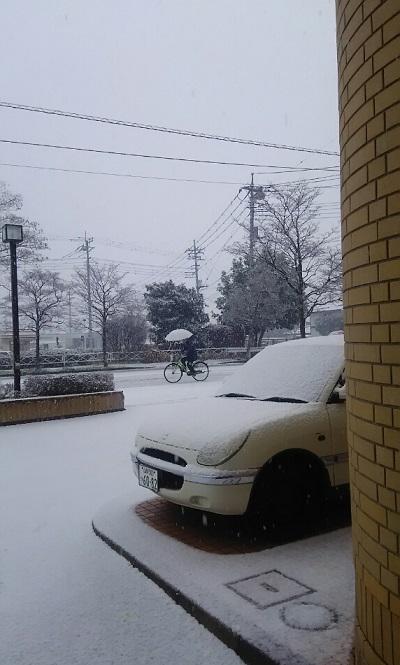 20160108 雪