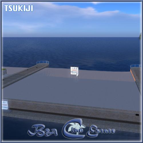 KukakuSS-T-N2.jpg