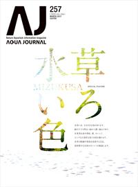 AJ257_news_001.jpg