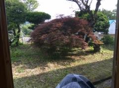 okazaki025.jpg