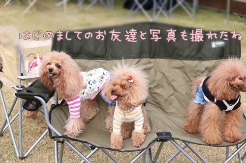 AImage_d97a464_U.jpg
