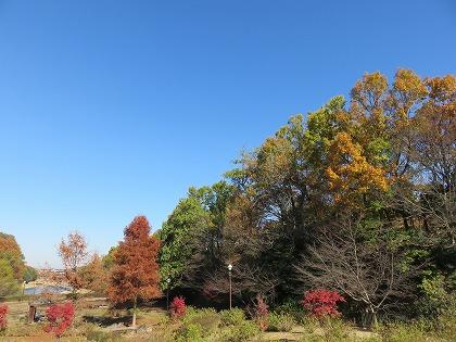 寺が池公園