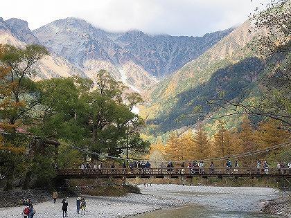 上高地のカラマツ (河童橋と穂高連峰とカラマツ林)