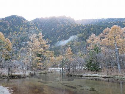 上高地のカラマツ (田代池とカラマツ林 午前7時)