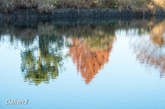 藤岡市庚申山公園ひょうたん池