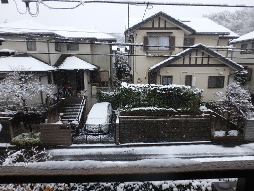 雪 2016