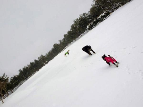 雪山&雪原の季節到来15