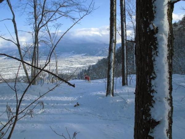 雪山&雪原の季節到来4