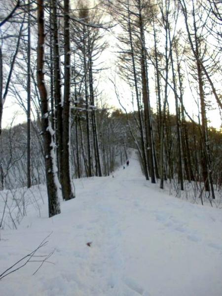 雪山&雪原の季節到来6