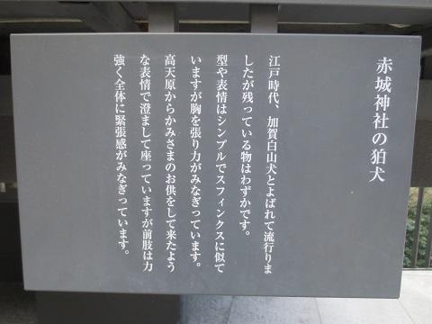 0114FSAKG9.jpg