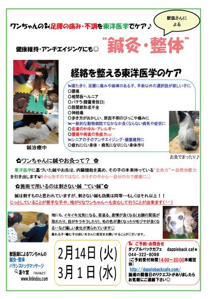 鍼灸201721431