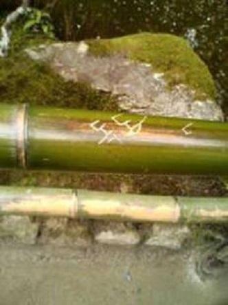 銀閣寺のハングル落書き被害