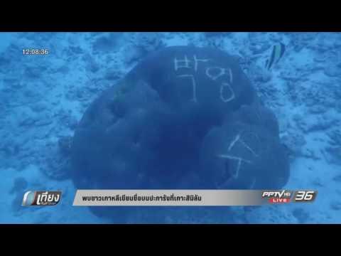 พบชาวเกาหลีเขียนชื่อบนปะการังที่เกาะสิมิลัน - เที่ยงทันข่าว