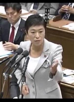 【国会】辻元清美『防衛大臣を続けたいなら核武装論を撤回しろ!!』VS稲田大臣『核のない世界を目指す』 平成28年9月30日