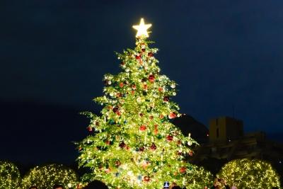 2016年クリスマスツリー