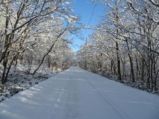 いいづなリゾートスキー場に続く道