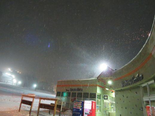 今夜も   雪