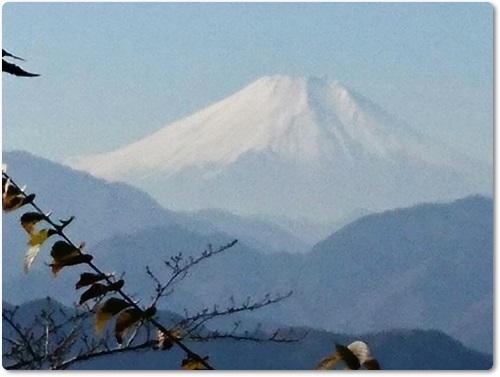 takaomomi3.jpg