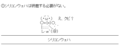 WS000161