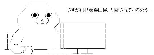 WS001254