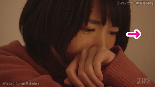 逃げるは恥だが役に立つ (第11話/最終回 15分拡大版・2016/12/13) 感想