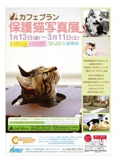 確定 保護ネコ写真展リーフ修正h1_b1_1215