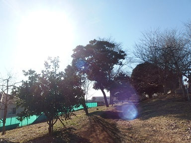 2-7公園1f
