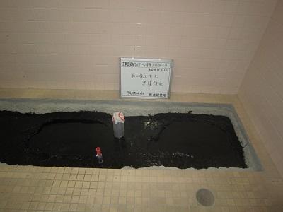 5階女子トイレ塗膜防水 ③