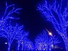 青の洞窟イルミ3