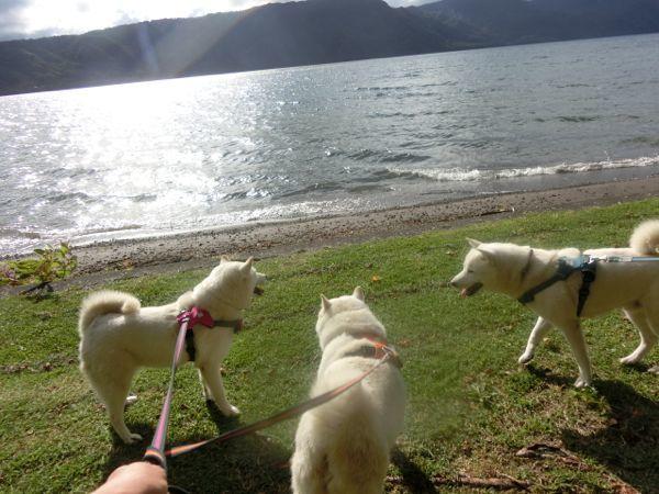 2016.9.10 十和田湖3