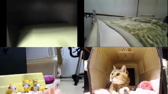 監視カメラは見た!03