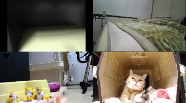 監視カメラは見た!02
