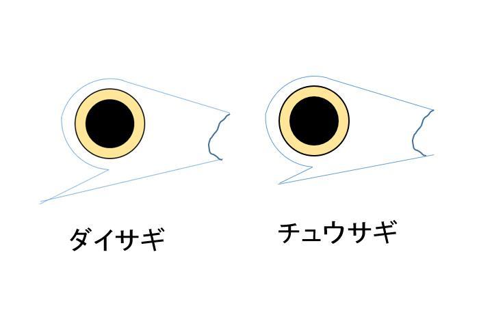 2017011400.jpg