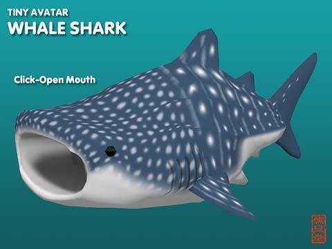Pop_TinyWhaleShark_blog02.jpg