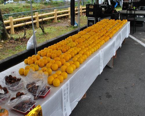 農産物展示2
