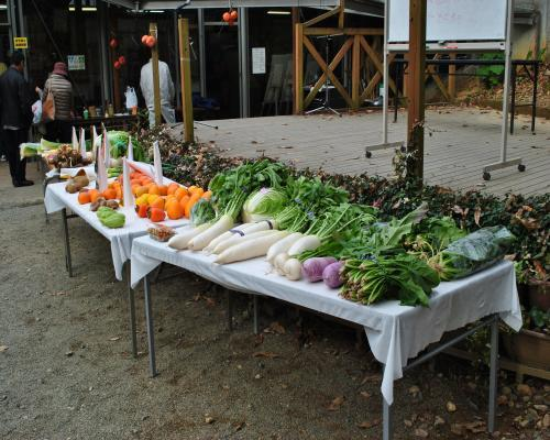 競り用の野菜1