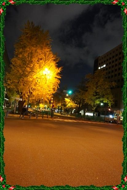 2016-12銀杏