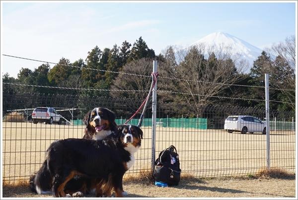 2017-1富士山とふたり