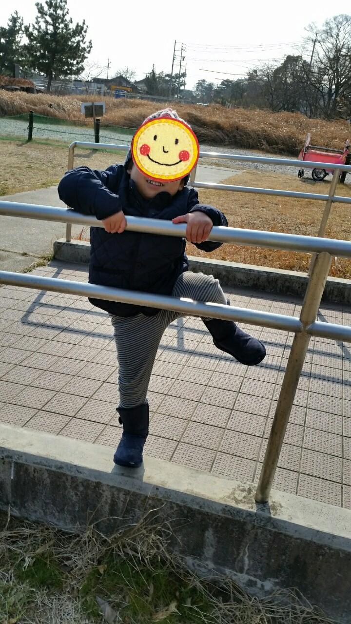 20170121133356393.jpg