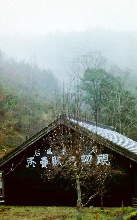 鳳来寺参道-6
