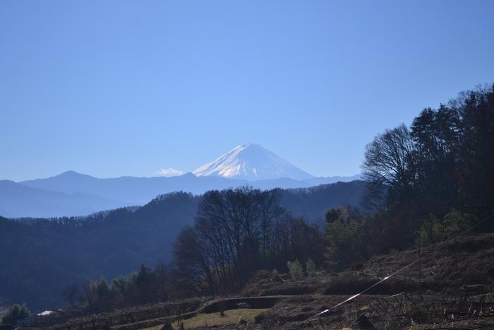 元旦の富士山28