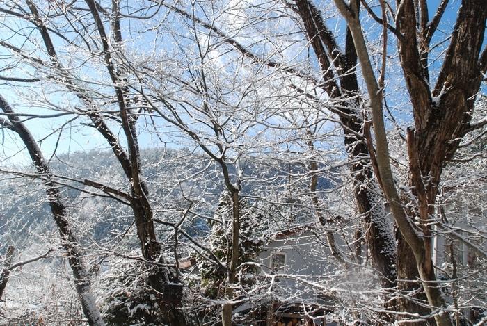 雪景色85