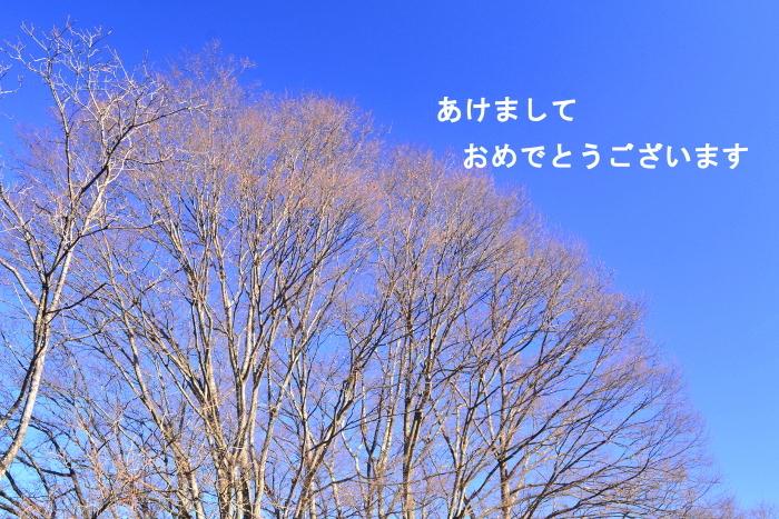 DSC_0076v1.jpg