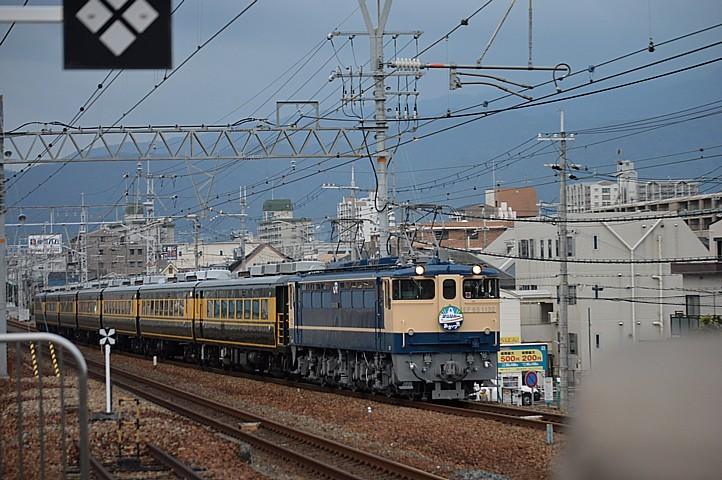 DSC_3486s.jpg